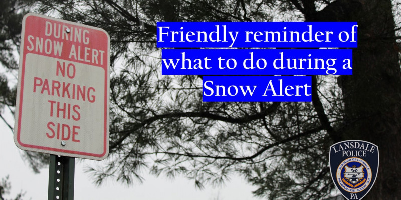 Image for What does a Snow Emergency or Snow Alert mean for you?